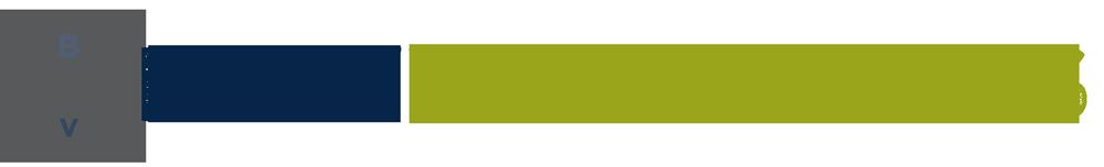 BestVaporizers.net logo